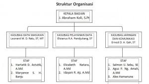 Struktur Organisasi PDE